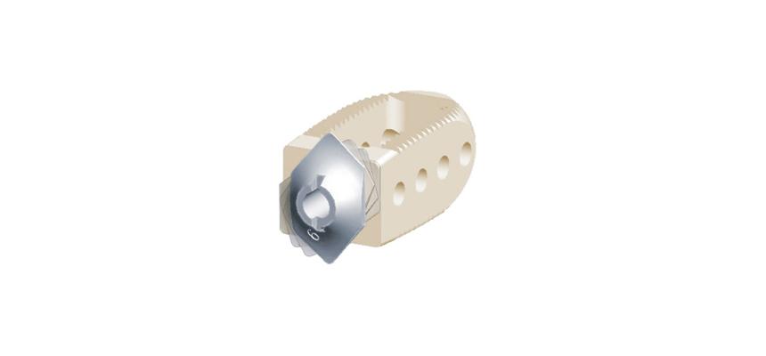 HRL Plif Locking CAGE
